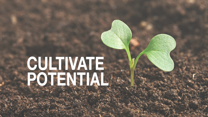 Cultivate Potential